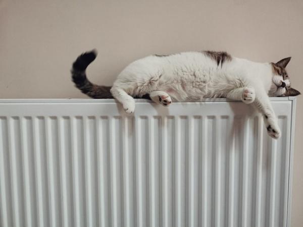 De verschillende toepassingen van radiatorfolie